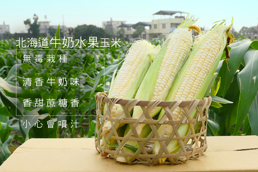 FruitCorn11